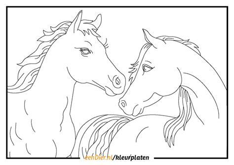 Kleurplaat Paarden Uitprinten by Paarden Kleurplaten