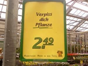 Verpiss Dich Pflanze : die perfekte pflanze ~ Orissabook.com Haus und Dekorationen