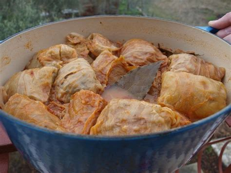 sarma recipe 17 best images about serbian food on pinterest traditional cabbages and creamy chicken soups