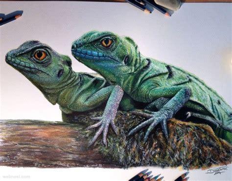 beautiful animal drawings   inspiration