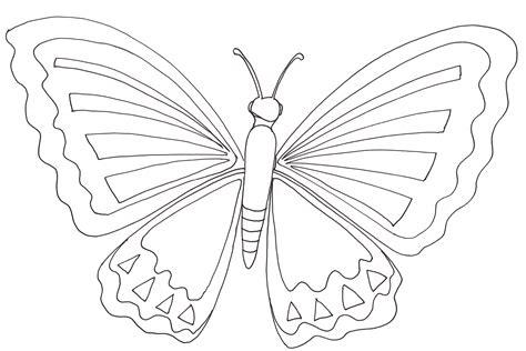 Dessin A Imprimer Papillon