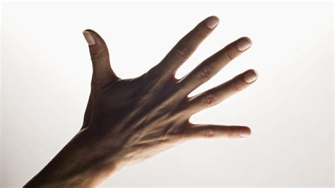 Five Fingers by What Are The Names Of The Five Fingers Of The