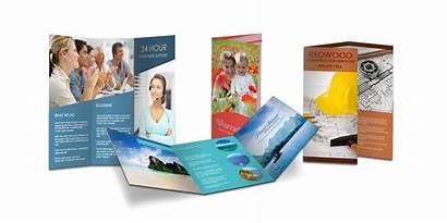 Printing Business Materials Cards Tampa Brochures Ev2