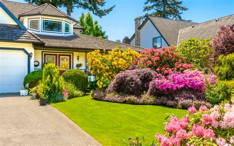 wonderful landscaping ideas  beautify  front yard