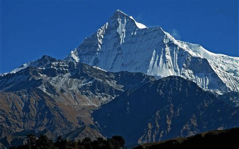 Seven Summit Treks Pvt. Ltd