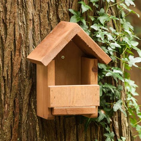 apex robin box the nestbox company