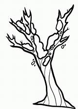 Tree Coloring Bare Pages Cliparts Seaweed Branches Template Without Popular Leave sketch template