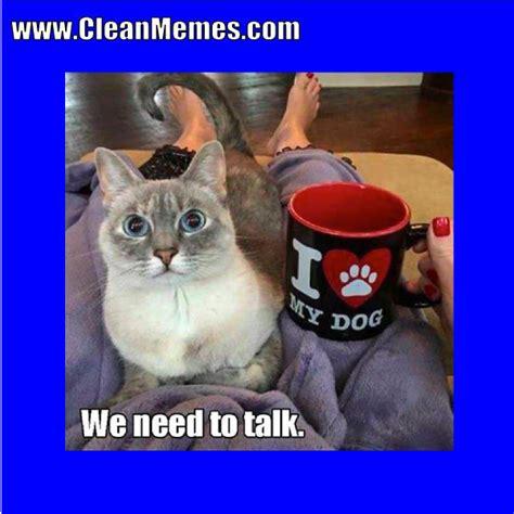 Cat Memes Clean - cat memes clean memes the best the most online