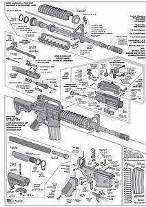 247 Best Firearms