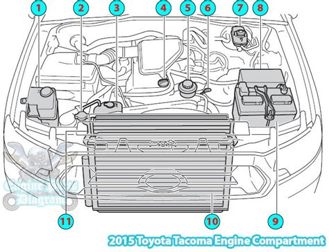 toyota 8 cylinder engine diagram toyota free engine for user manual