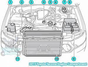 2004 Toyota Tacoma Parts Diagram