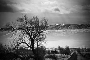White And Black : black and white photographybycjp ~ Medecine-chirurgie-esthetiques.com Avis de Voitures