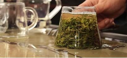 Tea Pitcher Glass Drink Strainer Cinemagraph Ways