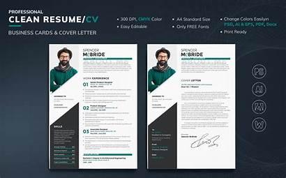 Resume Template Designer Spencer Mcbride Templates Templatemonster