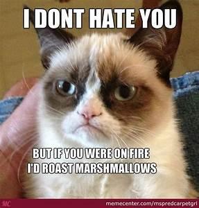 I Dont Hate You by mspredcarpetgrl - Meme Center