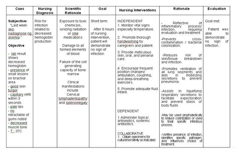 diabetes action plan examples  docs word examples