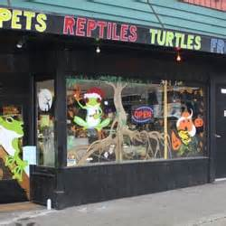 seattle reptiles closed pet stores everett wa yelp