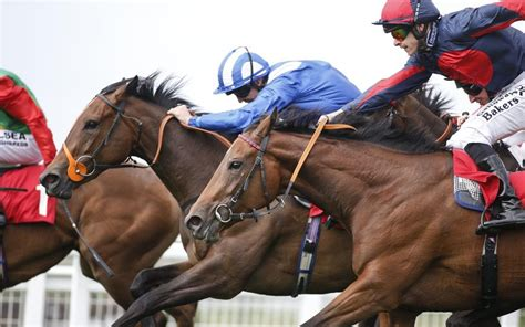 Punters Left Bemused As 'wrong Horse' Wins Great Yarmouth
