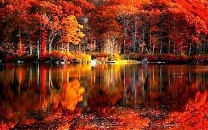 Autumn Lake Desktop Wallpaper - WallpaperSafari