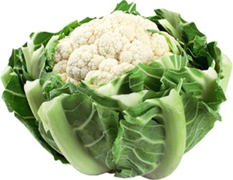 clipart cuisine chou fleur blanc prince de bretagne