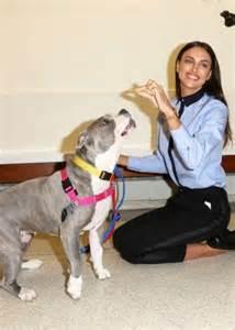 NYC ASPCA Adoption Center