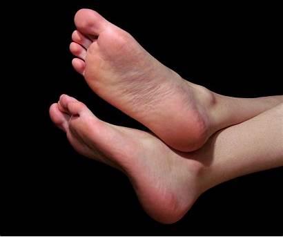 Wikipedia Foot Feet Wiki English Grown