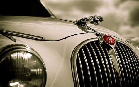 35+ Free Jaguar Wallpaper Images For Desktop Download