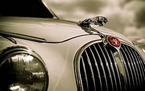 35 Free Jaguar Wallpaper Images For Desktop Download