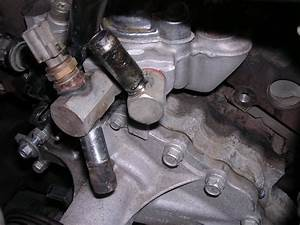 Lower Radiator Hose - Ranger-forums