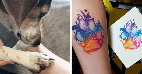 donos estao tatuando  pata de seus caes   resultado