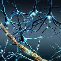 Рассеянный склероз гипертония