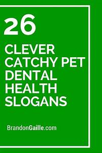 Catchy Cleaning Company Names 26 Clever Catchy Pet Dental Health Slogans Dental Health