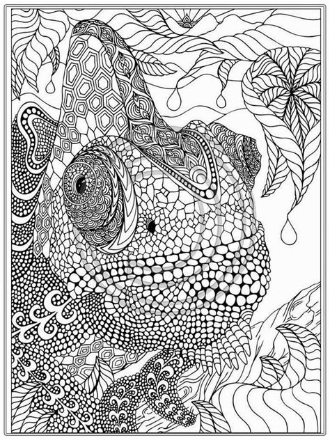coloring pages adult coloring pages  print