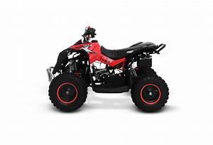 Quadriciclo Infantil 49cc A Gasolina - 2 Tempos
