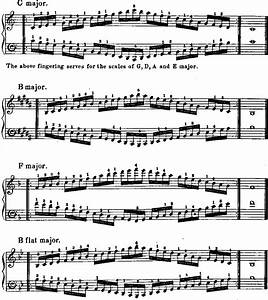 Piano Finger Exercises For Beginners Pdf - piano note and ...