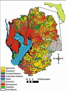 The Tampa Bay  Florida Watershed  Land Cover Aggregated