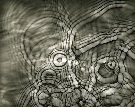 water photogram shokoofeh dezfuli art works