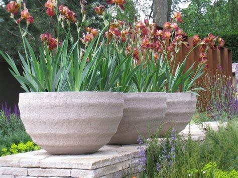 vasi fiori vaso fiori piante da terrazzo vaso di fiori