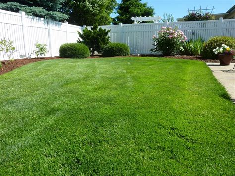 backyard photos lawn care in parrish fl your green team