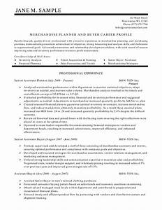 Resume Summary Statement Examples