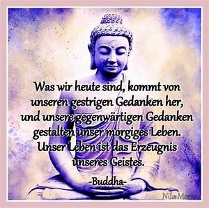 Buddha Bilder Kostenlos : zitate lebensweisheiten buddha kh05 startupjobsfa ~ Watch28wear.com Haus und Dekorationen