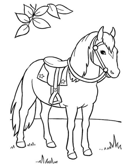 Kleurplaten Natuur Dieren by Paard In De Natuur Kleurplaat Plaatsen Om Te Bezoeken