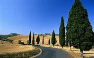 Landscapes Country Road Desktop