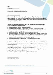 EE Member Appointment Letter, Doent, Labour Law, South Africa, Pdf, Download
