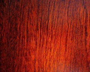 choosing   wood finish diy extra