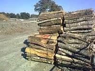 Bois De Chauffage 35 : bois de chauffage 35 ille et vilaine onf corbin ~ Dallasstarsshop.com Idées de Décoration