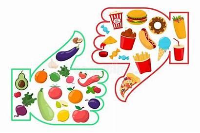 Unhealthy Healthy Junk Vector Hamburger صحي French