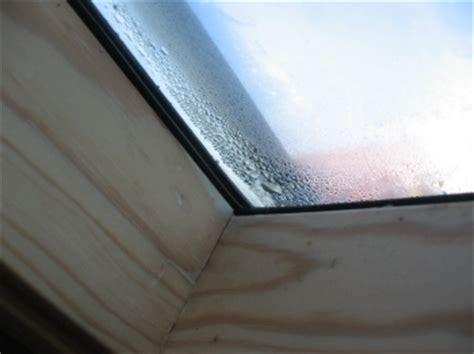 luftfeuchtigkeit zu hoch tipps und infos zur optimalen luftfeuchtigkeit im wohnraum