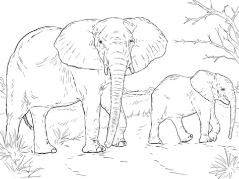 African Elephant Mother And Baby Coloring page from