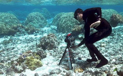 stanford drones open    world  coral research